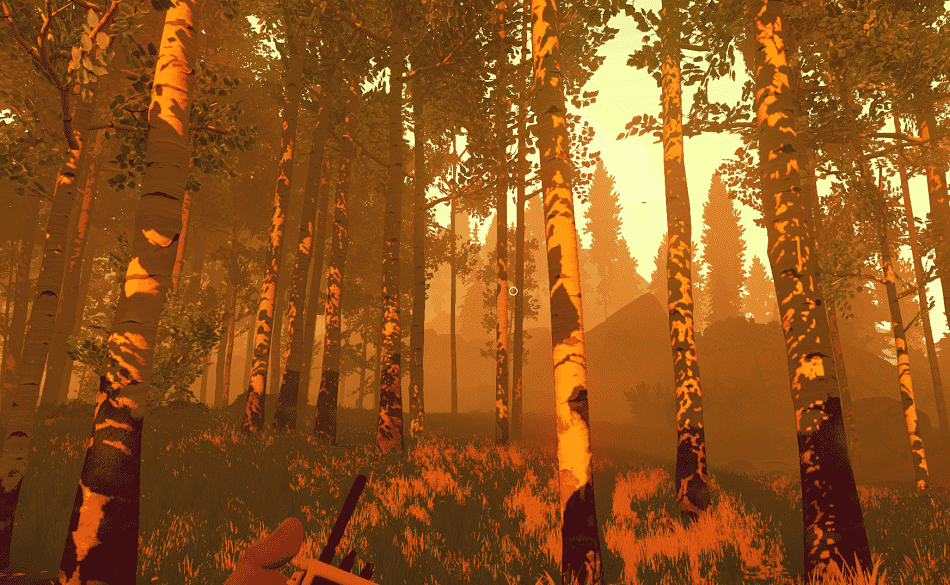 firewatch woods